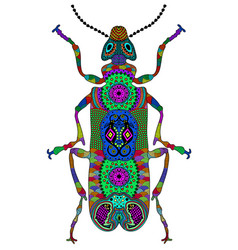 Entangle stylized color beetle hand drawn vector