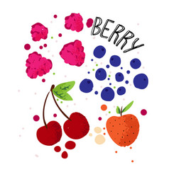 hand draw berries set strawberry cherry vector image