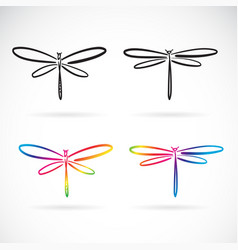hand drawn doodle style dragonfly isolated vector image