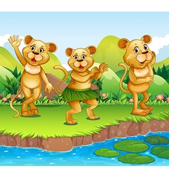Lions dancing by the river vector