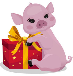 Little piglet with a gift pink pig with red box vector