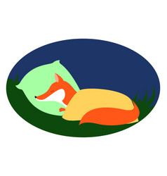 red fox sleeping on white background vector image