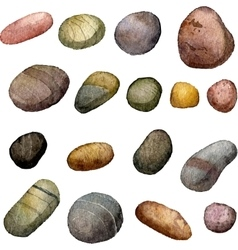 sea stones drawing in watercolor vector image