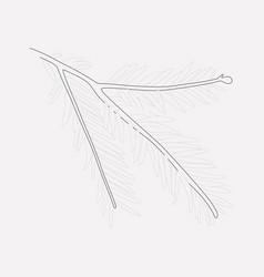 sequoia leaf icon line element vector image
