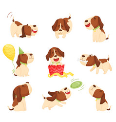 Set cute beagle puppies on vector