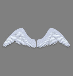 white angel wings vector image