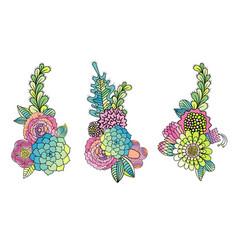 floral hand drawn set succulent rose leaf vector image