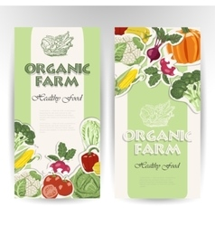 Vegetable card template vector image vector image