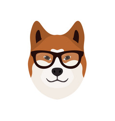 akita inu dog cute dog in glasses vector image