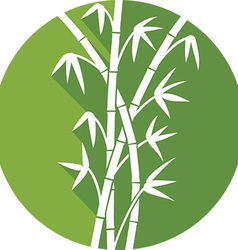 Bamboo Icon vector image
