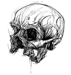 Broken Skull Drawing line work vector image