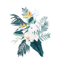 floral bouquet design element exotic vector image
