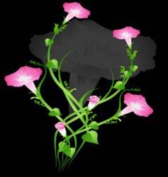 flower ivy vector image