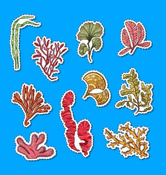 hand drawn seaweed elements sticker set vector image