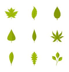 leaf icons set flat style vector image