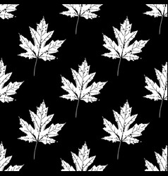 prints of leaves of trees seamless pattern vector image