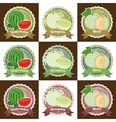 Set of various fresh melon fruit label tag badge vector image