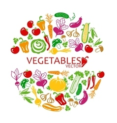 vegetables colored icons vector image