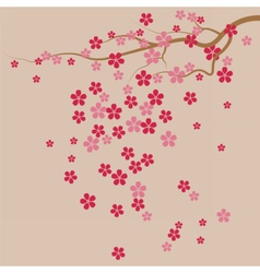 Cherry tree flowers background vector
