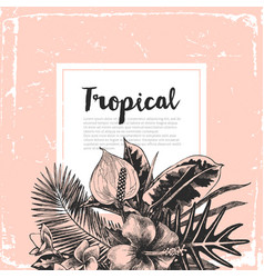 background with tropical plants vector image vector image