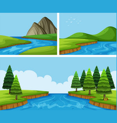 river scenes with pine trees vector image