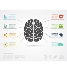 brain concept infographic vector image vector image