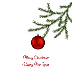 christmas fir tree branch and red bauble xmas bal vector image