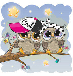 Cute owls is sitting on a branch vector