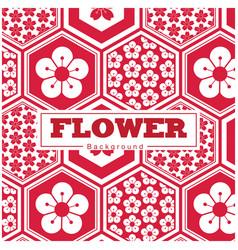 flower white and red sakura hexagon frame pattern vector image