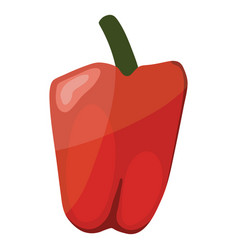 pepper icon vector image