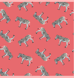 seamless pattern background with adult zebra vector image