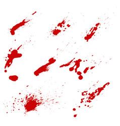 Set of blood splashes isolated on white vector