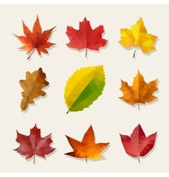 Set of Nine Low Poly Autumn Leaves vector
