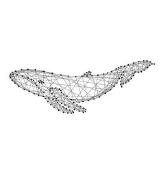 whale swimming under water from abstract vector image