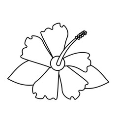 Hibiscus flower exotic thin line vector