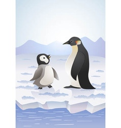 arctic pinguins vector image