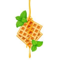 Belgian waffle honey vector