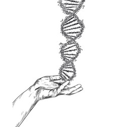 hand drawn hand holding large dna spiral vector image