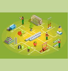 hydroponic farming isometric flowchart vector image
