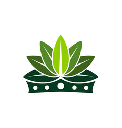 leaf crown logo design template vector image