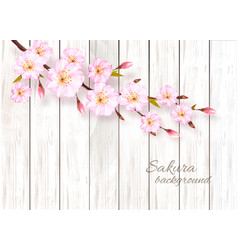 Nature spring background with beautiful vector