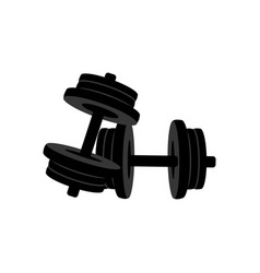 typesetting dumbbells fitness equipment vector image