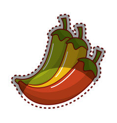 Yellow red and green chili pepper icon vector