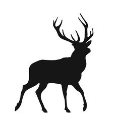 silhouette of the buck vector image