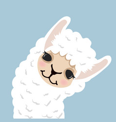 cute lama alpaca head vector image
