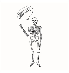 Fun smiling affably waving skeleton vector image