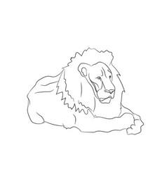 lion lies lines vector image