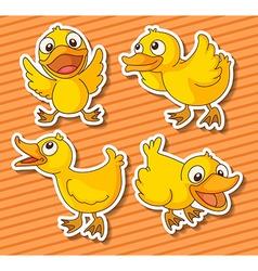 Ducklings vector image vector image