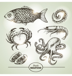 Hand drawing sketch set of seafood vector image vector image