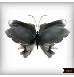 Watercolor black and white butterfly vector image vector image